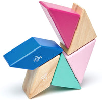 Tegu Magnetic 6-Piece Pocket Pouch Prism - Blossom