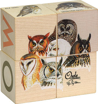 Cubes Block - Owl, Bird