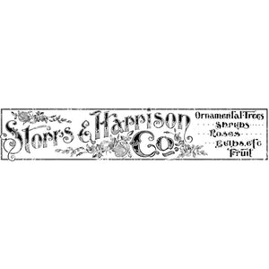 Storrs and Harrison 12x60 Decor Transfer-Iron Orchid Designs IOD-ReVamp Vintage Market