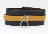 Collar with Colored Leather Inset