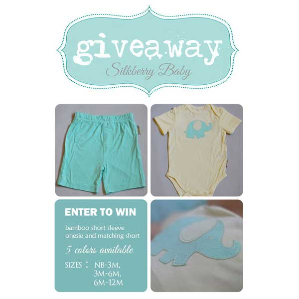 Silkberry Baby April Giveaway