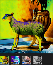 Load image into Gallery viewer, Baaaaaa
