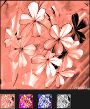 Load image into Gallery viewer, Beacoup de Fleurs YSL II