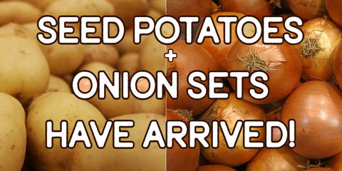 Seed potatoes and onion sets are now available!