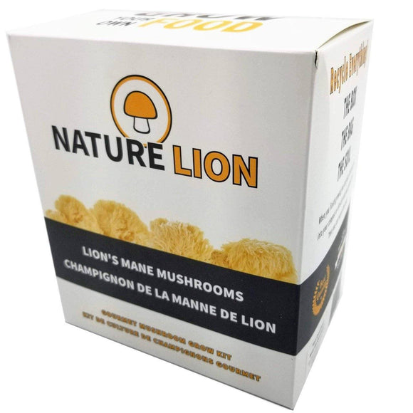 Mushroom Grow Kit - Lion's Mane