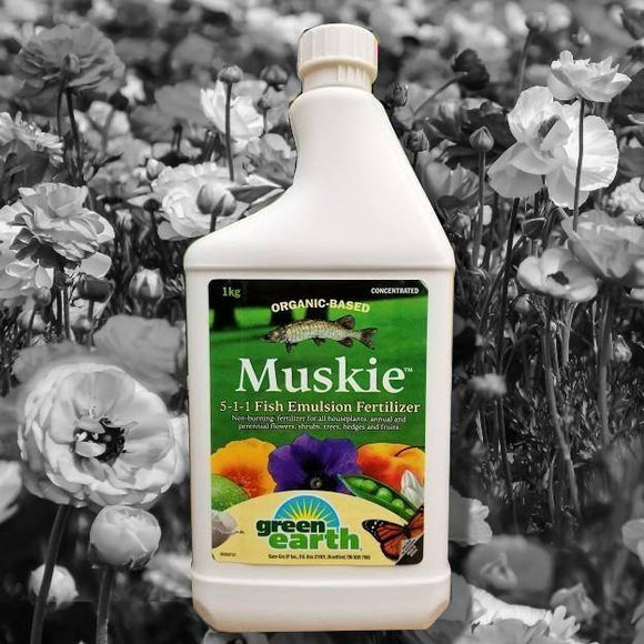 Green Earth MUSKIE 5-1-1 Fish Emulsion Fertilizer 1kg