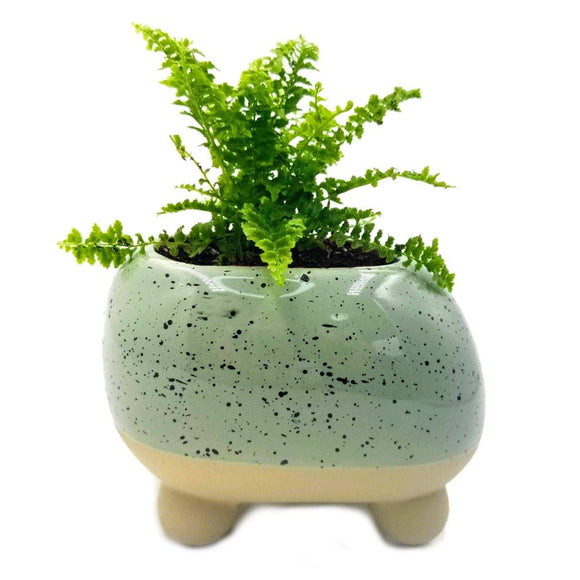 Rounded, Teal and Footed Ceramic Pot - 2