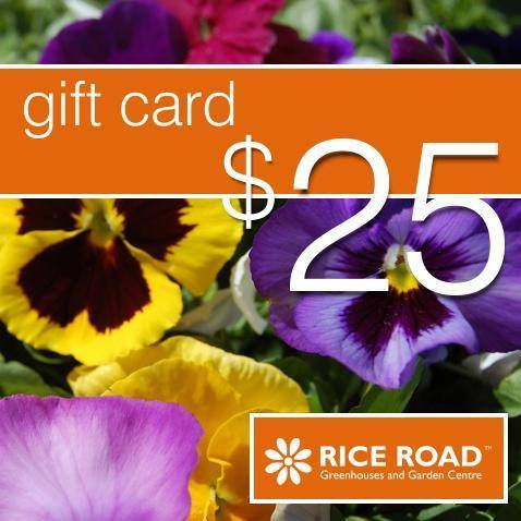$25 Physical Gift Card - available from RiceRoadGreenhouses in Ontario, Canada