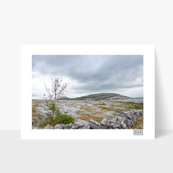 The Burren | Mullaghmore | County Clare | Ireland
