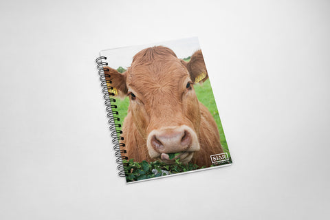 Rua the Cow | Notebook