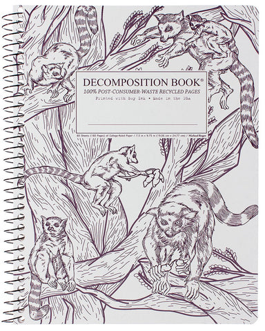 DECOMPOSITION BOOK 9.75'' X 8'' SPIRAL BOUND