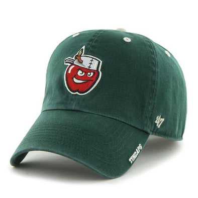 Fort Wayne TinCaps Dark Green Ice Clean Up