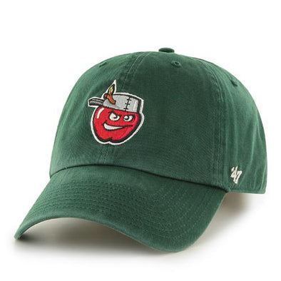 Fort Wayne TinCaps Dark Green Clean Up Youth