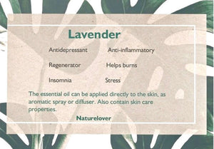 Aromatic spray - Lavender