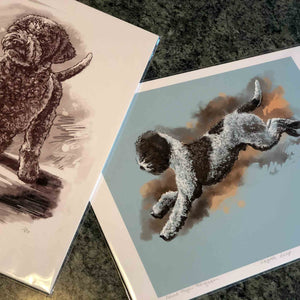 Lagotto Leap Into Blue - Limited Edition Print