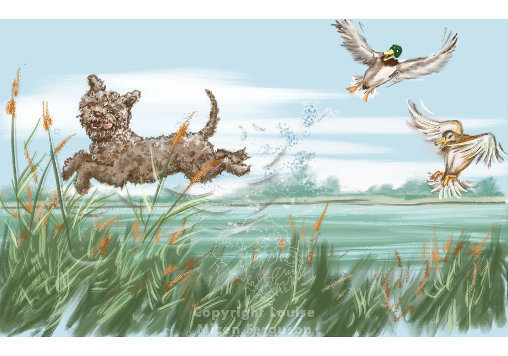 Italian Duck Retriever - Limited Edition Print