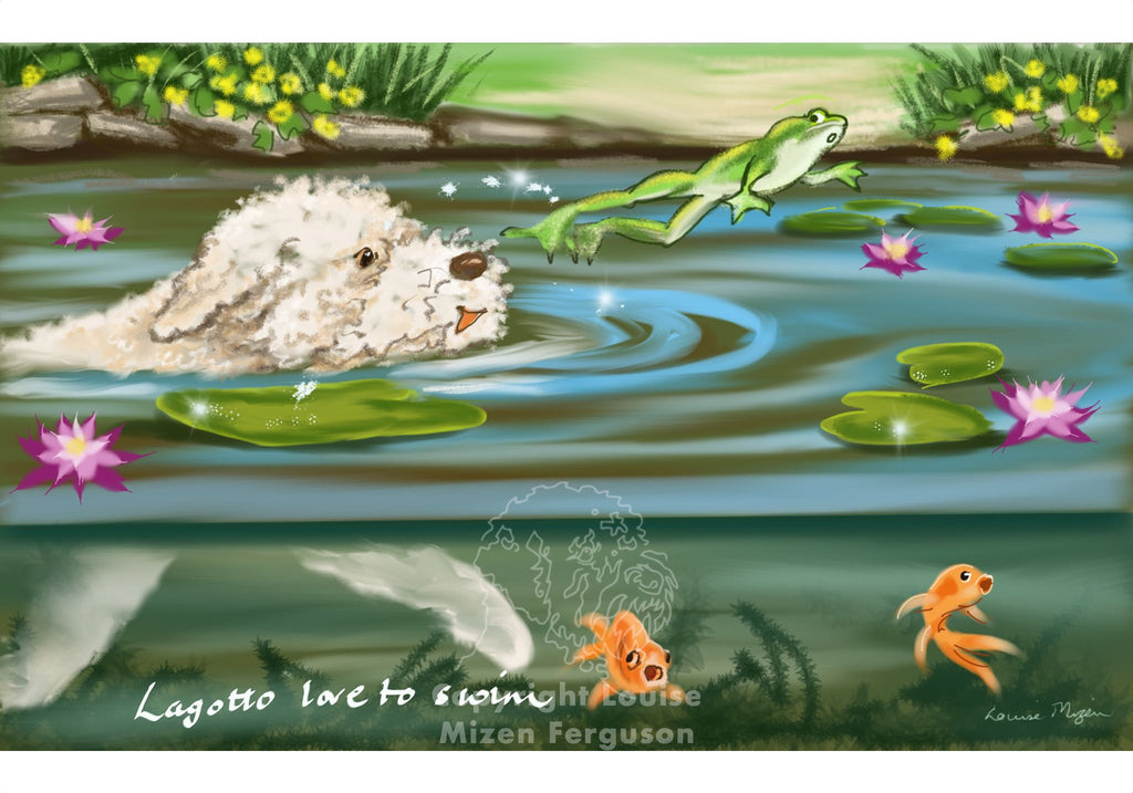 Lagotto Love to Swim - Limited Edition Print