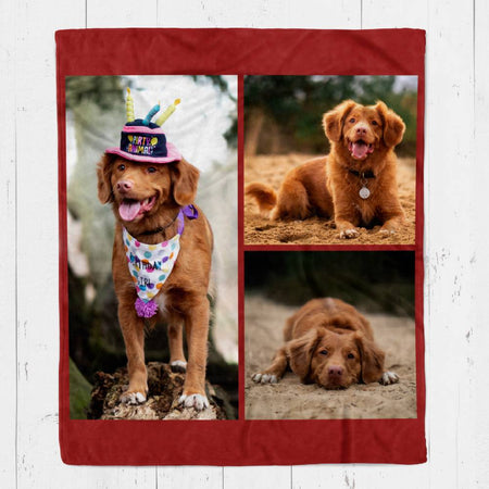 Custom Pet Photo Blankets