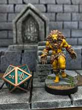 Load image into Gallery viewer, 28 Heroes and Animal Companions Miniatures Set