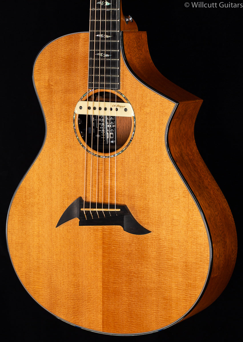 Breedlove Fusion Special Edition New Old Stock (090)