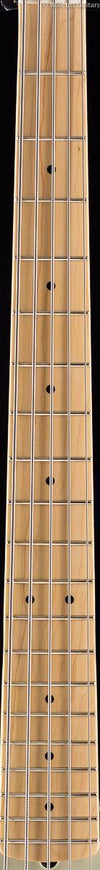 Fender American Professional Precision Bass V Antique Olive Maple (432)