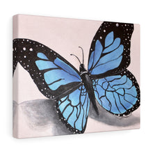 Load image into Gallery viewer, Blue Butterfly Print Canvas Gallery Wraps