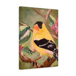 Yellow Finch Print Canvas Gallery Wraps