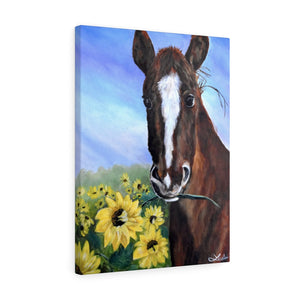 Horse & Sunflowers Acrylic Painting Print Canvas Gallery Wraps