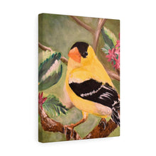 Load image into Gallery viewer, Yellow Finch Print Canvas Gallery Wraps