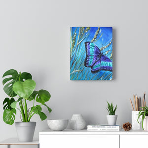 Butterfly Acrylic Painting Prints Canvas Gallery Wraps