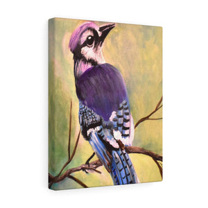 Blue Jay Print Canvas Gallery Wraps