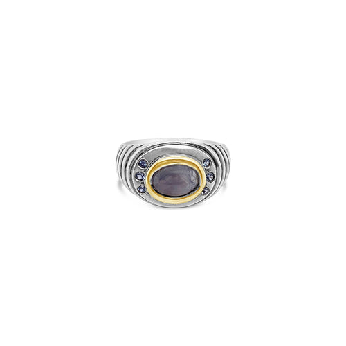 Sterling Silver and 18k Yellow Gold Star Sapphire Ring