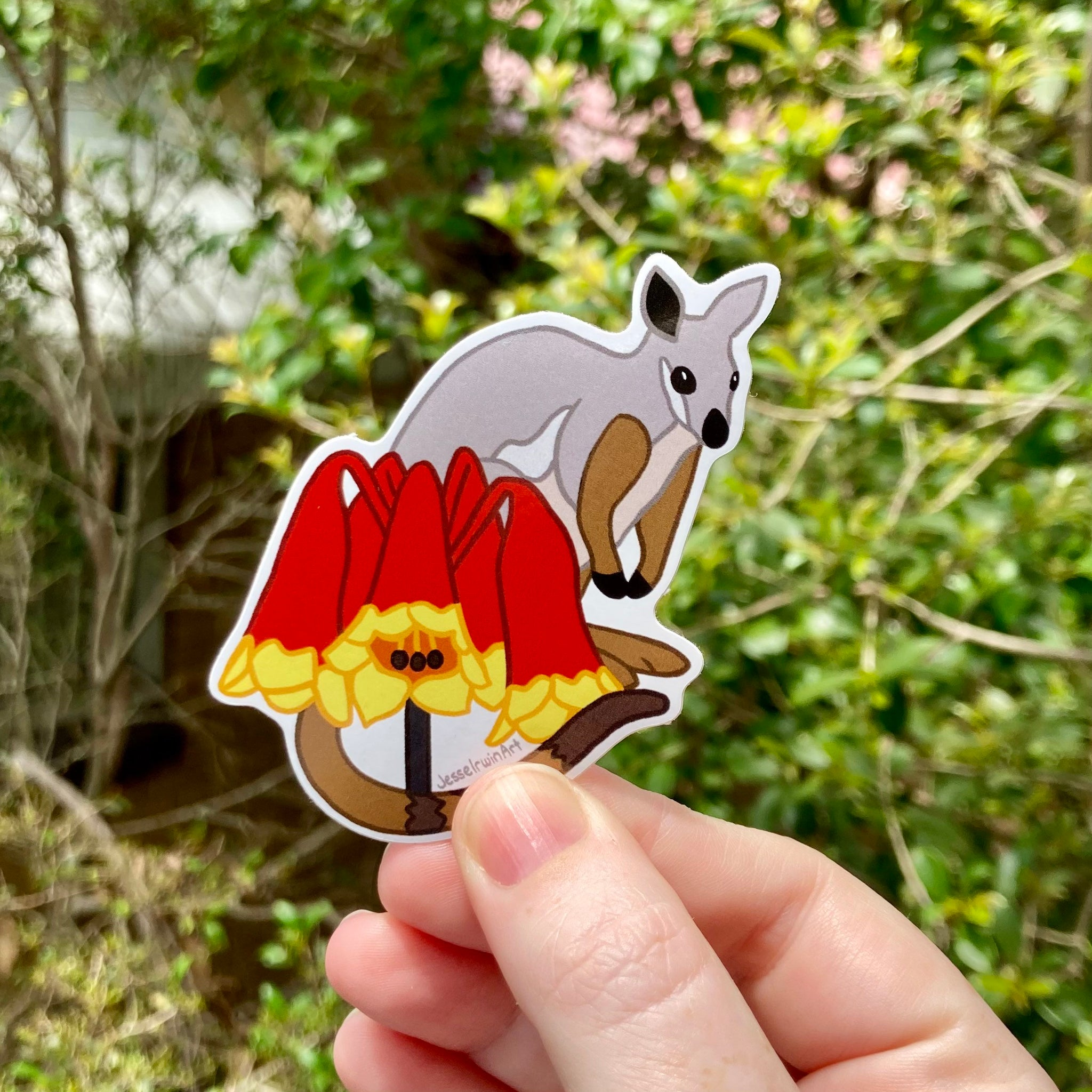 Brush Tailed Rock Wallaby and Christmas Bells Vinyl Sticker - Australian Animals and Flowers - Die Cut Vinyl Sticker - Laptop Decal
