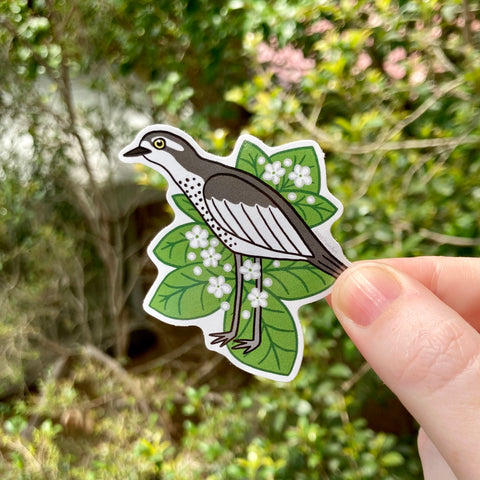 Bush Stone Curlew and Native Night Jasmine Vinyl Sticker - Australian Animals and Flowers - Die Cut Vinyl Sticker - Laptop Decal