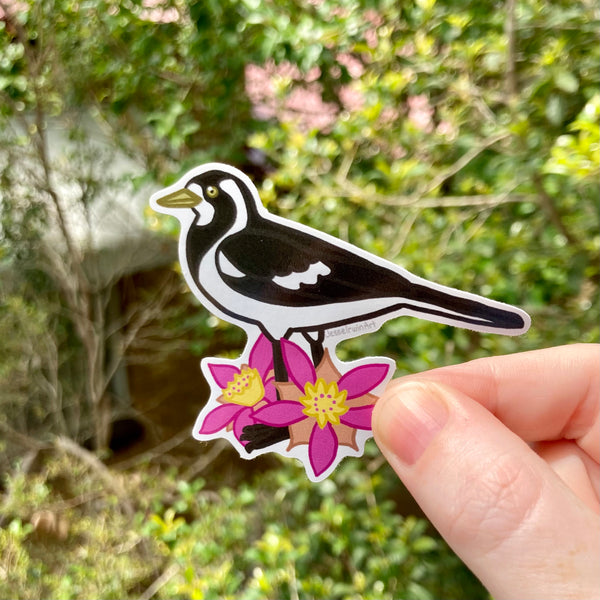 Peewee/Magpie-Lark and Calytrix Carinata Vinyl Sticker - Australian Animals and Flowers - Die Cut Vinyl Sticker - Laptop Decal