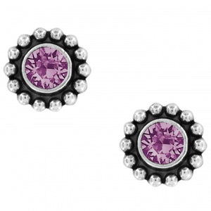 J2049G Twinkle Amethyst Mini Post Earrings
