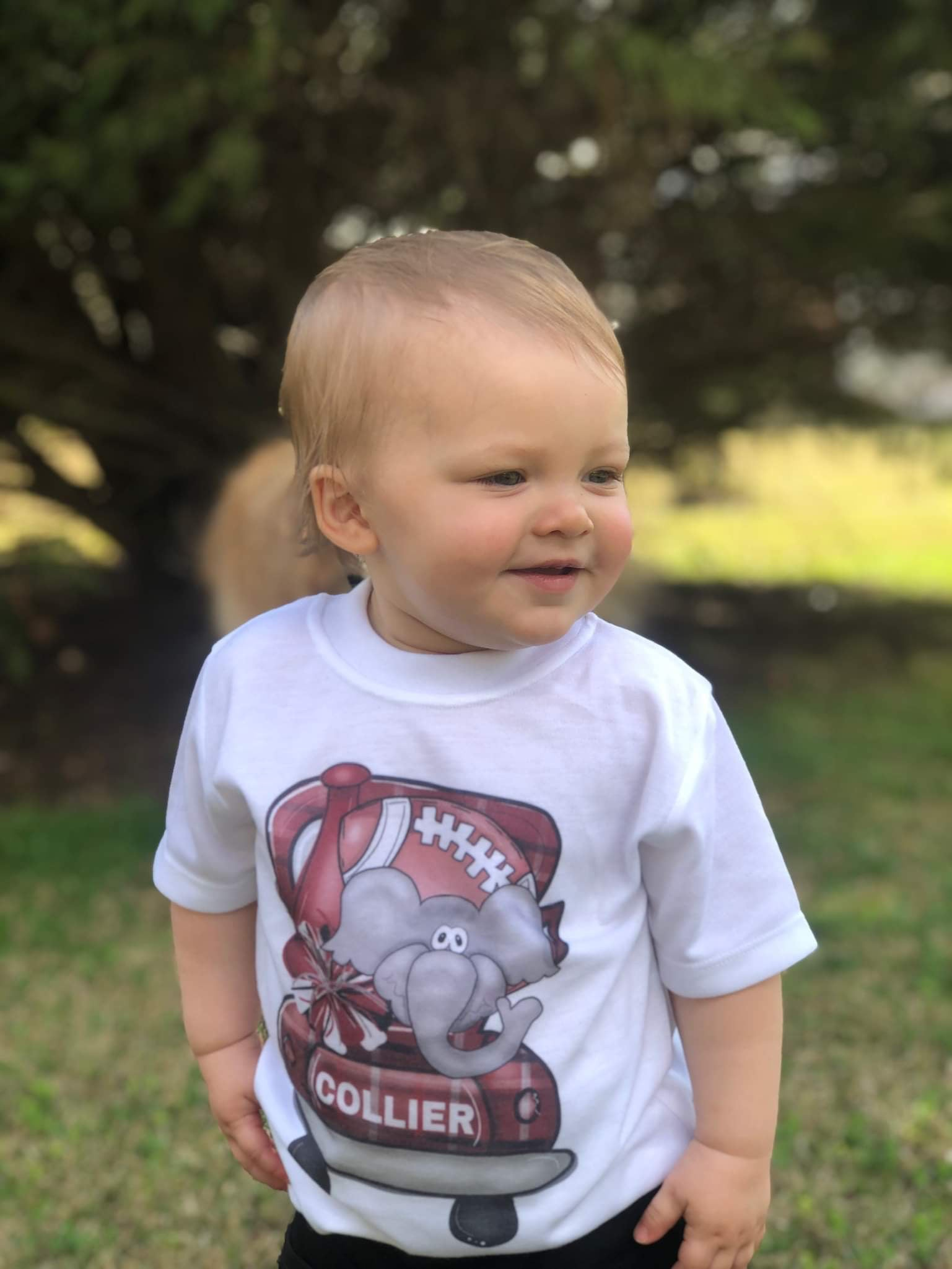 Toddler T-Shirts Short Sleeve