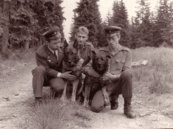 The history of the German Shepherd Dog