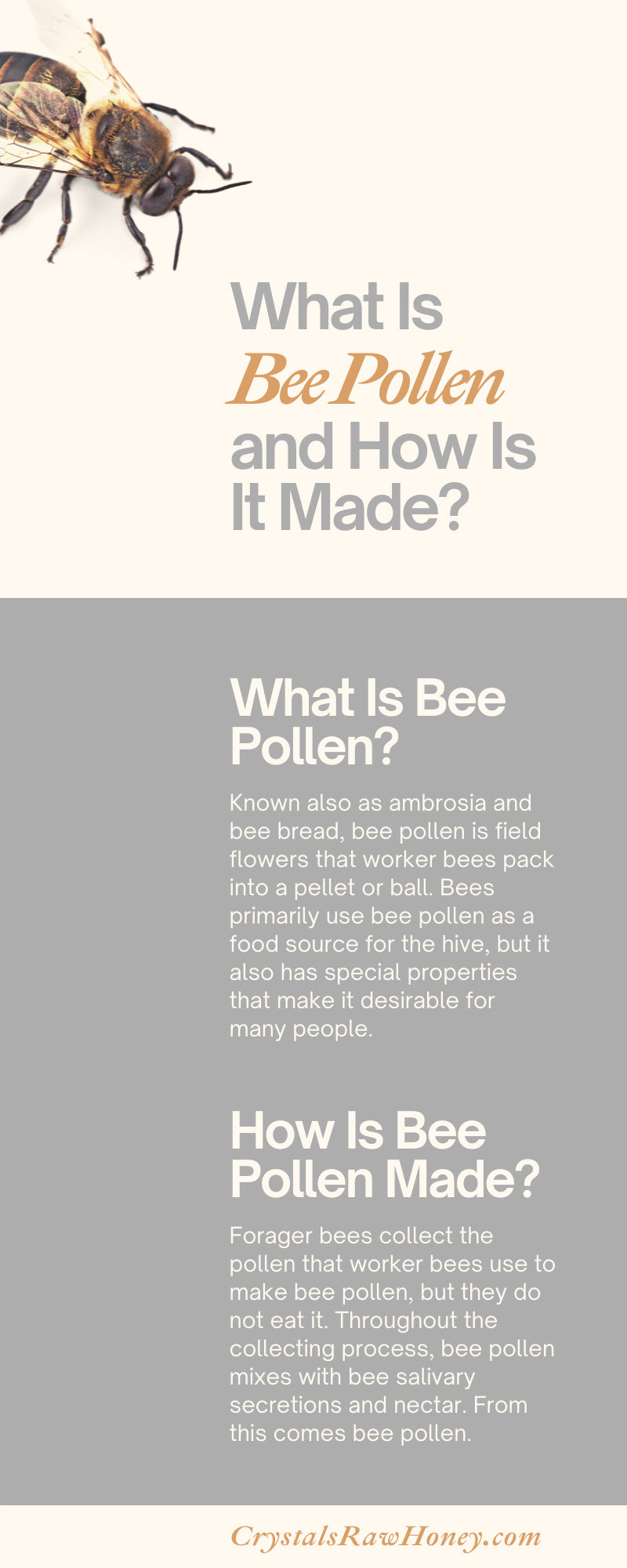 What Is Bee Pollen and How Is It Made?