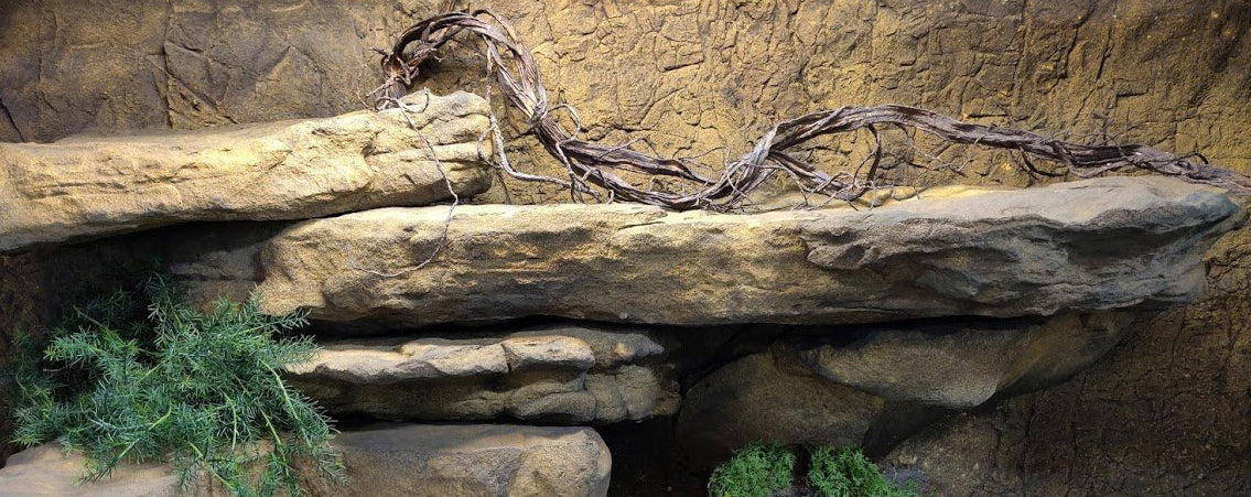 Artificial Rocks & Ledges for Reptiles