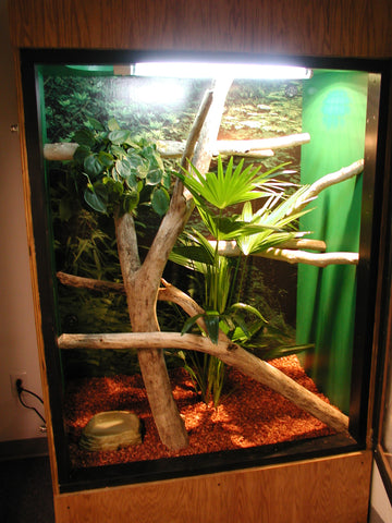 We approach designing reptile cages is very differently and have always designed our enclosures around the reptiles size and their specific needs.
