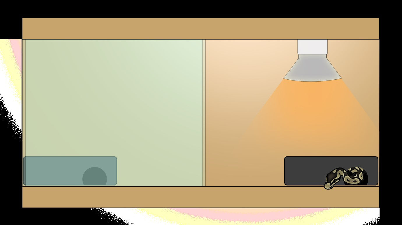 My crude example of the typical two hide set up with barren space in-between.