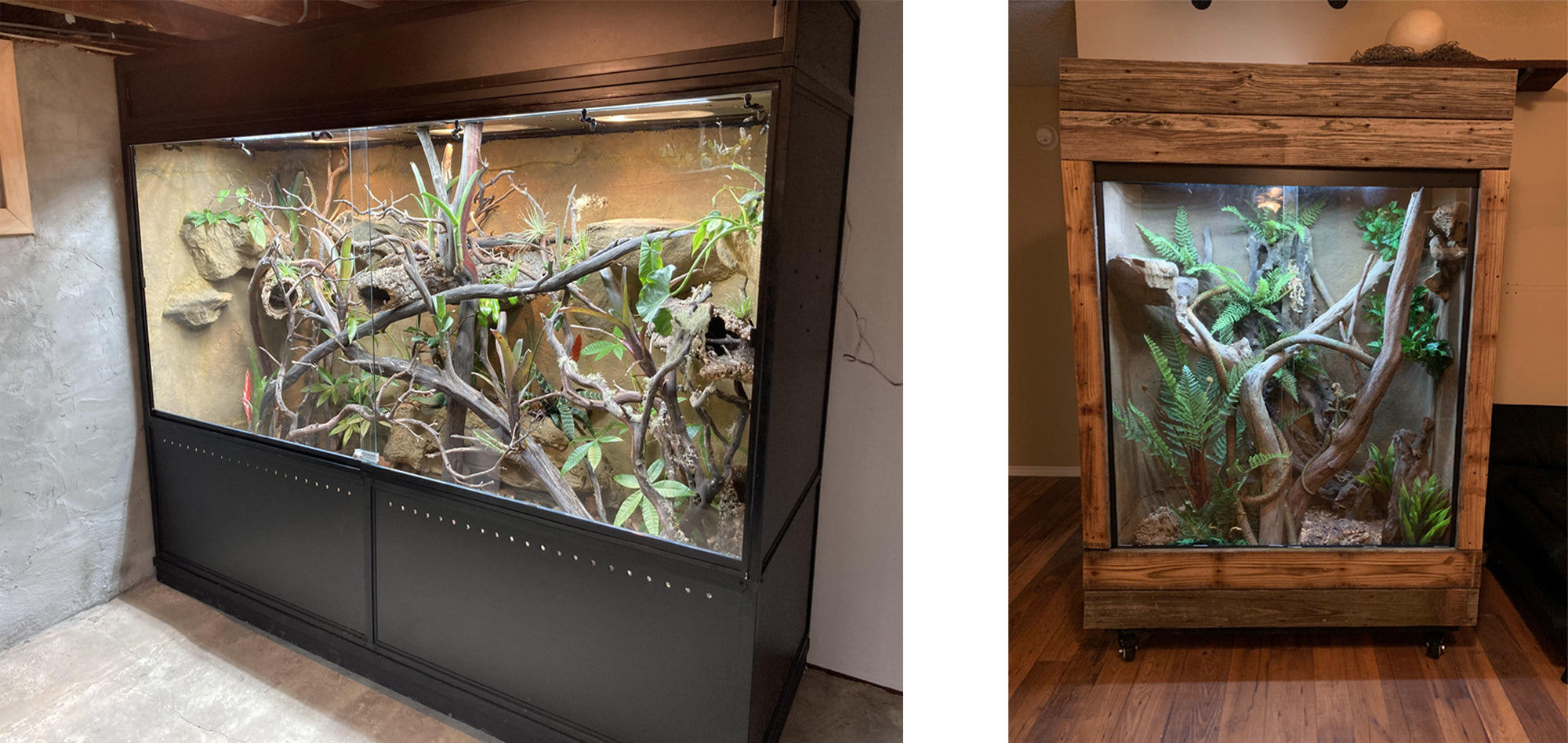 Larger custom reptile enclosures
