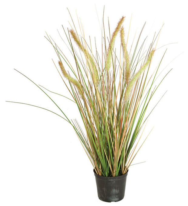 Foxtail and Onion Grass - 24 Inch