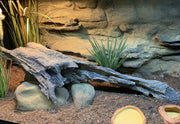 Large Artificial Log for Basking