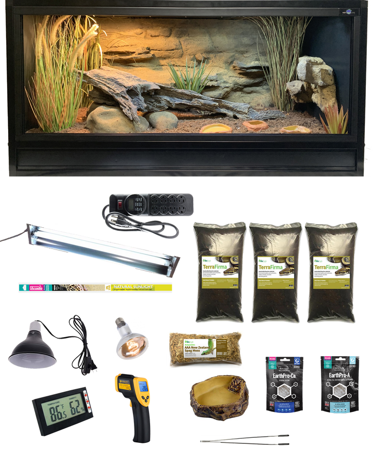 Complete Ball Python Kit with Essential 4 Enclosure and Decor Kit