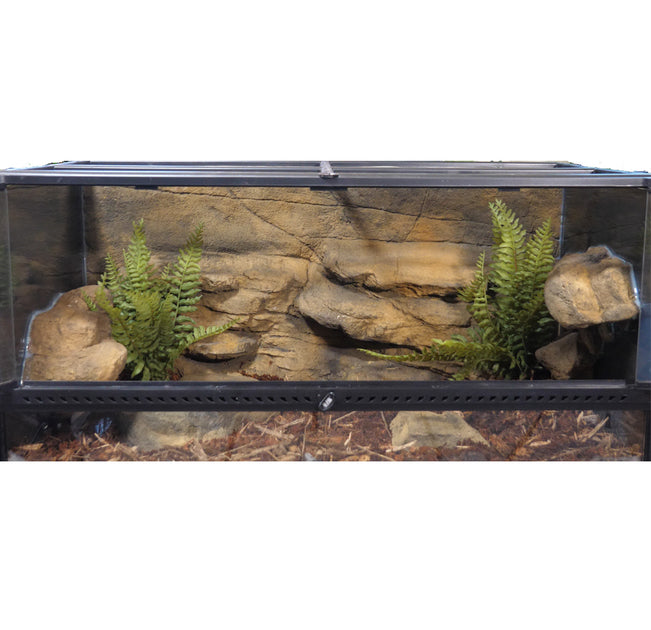 Snake Discovery 40 Gallon Tank Reptile Decor Kit Customreptilehabitats Com Amazon's choice for 40 gallon tank lid. custom reptile habitats