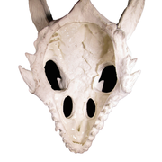 dragon skull large hide inside