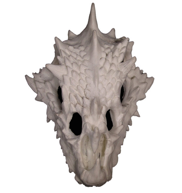small dragon skull hide top