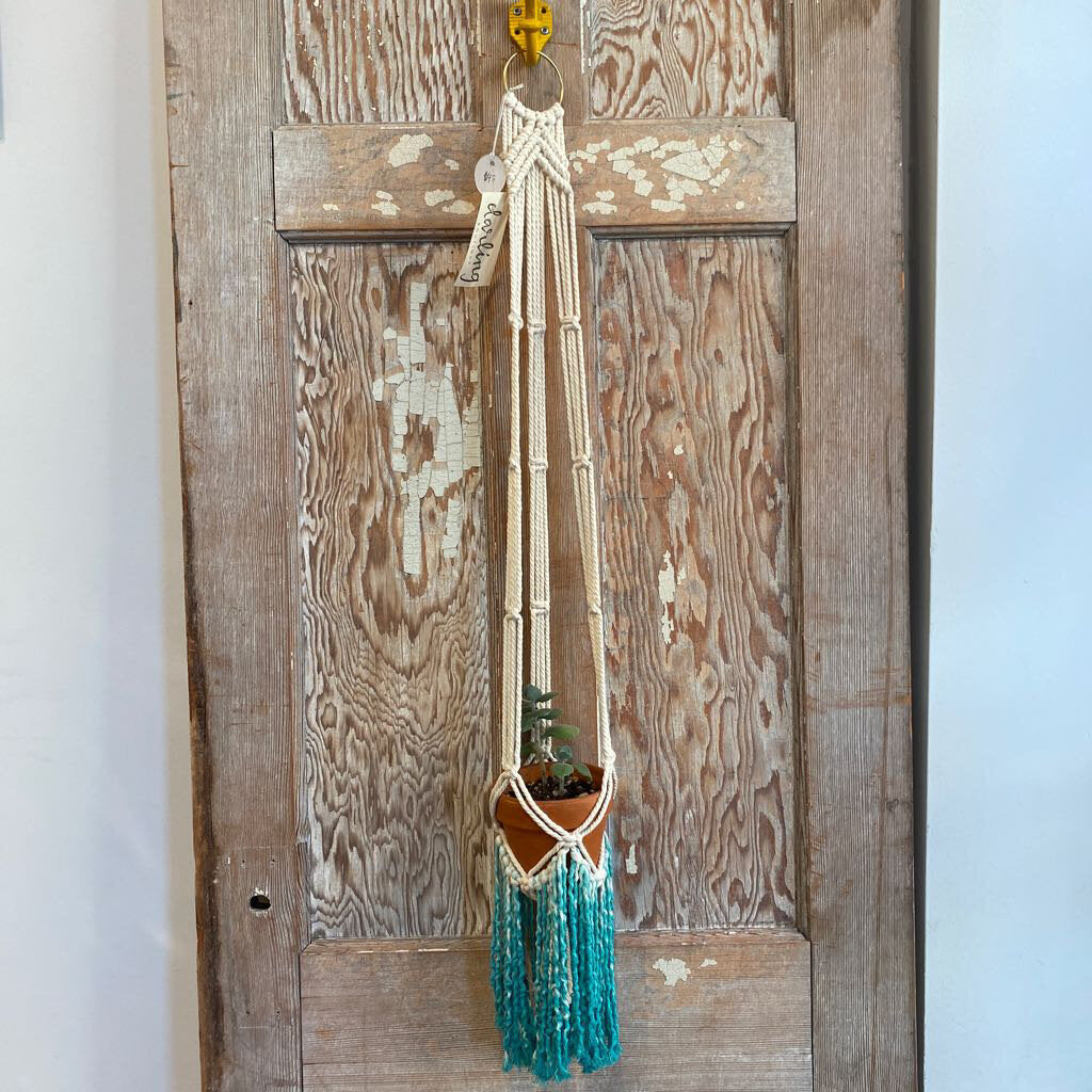 Macrame Plant Hanger Medium - Teal
